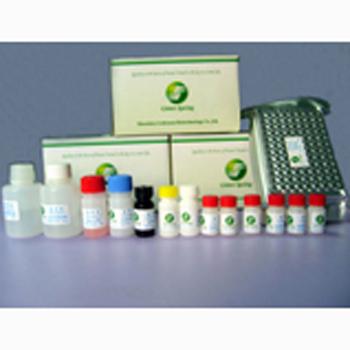 供应兔子神经胶质纤维酸性蛋白试剂盒