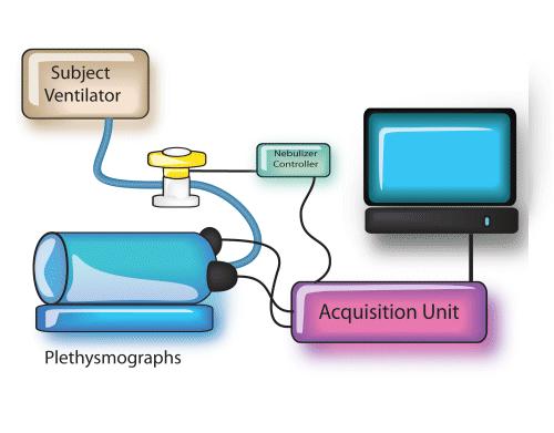动物气道阻力和肺顺应性检测系统