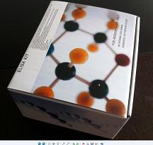 尿素(Urea)检测试剂盒(多种检测方法供您选择)
