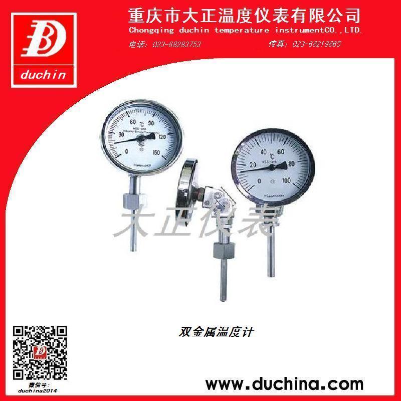 温度跟踪控制仪dzwg08-kae3.5-s