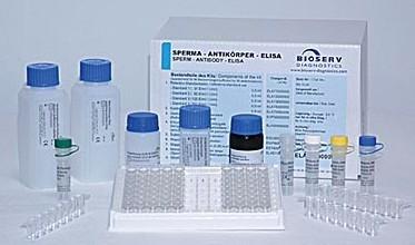 人白介素12(IL-12/P40)ELISA试剂盒说明书实验指导