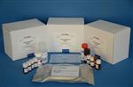 粪便隐血检测试剂盒三月促销