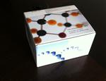 人的ELISA试剂盒人FMS样酪氨酸激酶3配体(Flt-3L)ELISA 试剂盒