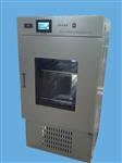 MJX-250触摸屏霉菌培养箱现货供应