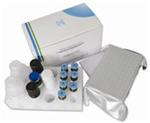人黏膜地址素细胞黏附分子(MAdCAM-1)Elisa试剂盒