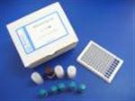 马主要组织相容性复合体(MHC/ELA)试剂盒