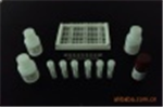 鸡神经胶质纤维酸性蛋白(GFAP)试剂盒
