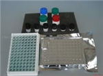 豚鼠肠脂肪酸结合蛋白(iFABP)试剂盒