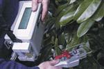 进口便携式光合仪的报价,光合作用测定仪,光合仪说明书