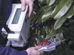 新型Lci国产超轻型光合作用测试系统使用原理,上海植物光合作用测定仪供应旦鼎