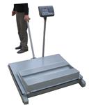 SR-SCS移动式地磅,量程可选0.5T,1T,2T,3T移动式地磅秤