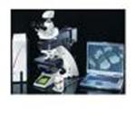 全自动生物显微镜 DM6000B