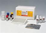 兔溶菌酶ELISA试剂盒说明书