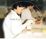 鸭免疫球蛋白E试剂盒多少钱