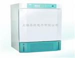 RGX-150B人工气候箱,低温人工气候箱价格,智能人工气候箱