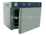 HH.CP-T二氧化碳培养箱,二氧化碳培养箱价格,二氧化碳培养箱厂家