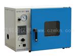 DZX系列真空干燥箱,真空干燥箱厂家