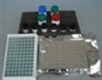 人细胞间粘附分子1 ELISA试剂盒