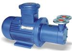 CWB型磁力传动旋涡泵,磁力旋涡泵