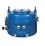 3610RSD-150角行程电子式电动执行器