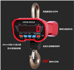 OCS嘉�d300kg直�吊�^�Q,邳州300kg防水�子吊磅