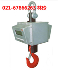 实惠3吨防暴吊秤,EX-3T本安型吊秤价钱