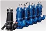 防洪应急水泵,雨季排水专用泵,最好的防涝水泵