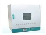供应立式电热鼓风干燥箱,电热恒温鼓风干燥箱报价,电热鼓风干燥箱批发