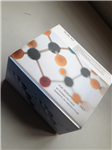 犬α干扰素(IFN-α)ELISA 试剂盒