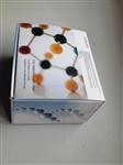 犬白细胞分化抗原6(CD6)ELISA 试剂盒