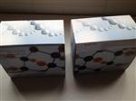 鸡17-酮类固醇(17-KS)ELISA 试剂盒