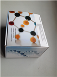 鸡可溶性细胞间粘附分子1(sICAM-1)ELISA 试剂盒
