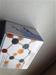 鸡α干扰素(IFN-α)ELISA 试剂盒