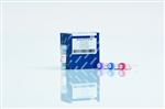 牛锌金属硫蛋白(Zn-MT)ELISA 试剂盒