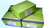 牛分泌型免疫球蛋白A(sIgA)ELISA 试剂盒