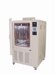HS025A恒定湿热试验箱 可程式恒温恒湿箱 上海恒温箱 湿热试验箱价格