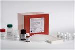 兔骨桥素检测结果,(OPN)ELISA试剂盒保存,96个孔elisa/48个孔e