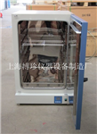 DGG-9420A立式200度电热恒温鼓风干燥箱 底部加热干燥 食品类干燥箱