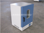 DGG-9146A立式300度鼓风干燥箱,电子类烘箱,食品类烘箱