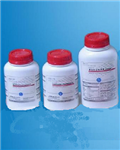 Triton-NH4OH细胞裂解液生产厂家 现货供应细胞裂解液