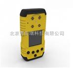 便携式氮氧化物检测仪