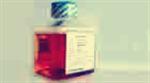 小鼠IgM类单克隆抗体腹水纯化试剂盒