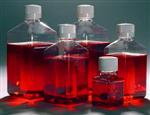 昆虫细胞无血清液体培养基