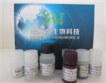 猪流感病毒A(FLU A)ELISA试剂盒现货供应,猪流感病毒(FLU A)ELISA试剂盒价格