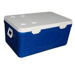 110LGSP认证专用药品保温箱
