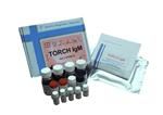 猪Ⅲ型前胶原氨基端肽(PⅢNT)ELISA试剂盒购买须知,一对一提供咨询