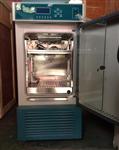 供应HWS-150B小型恒温恒湿培养箱价格,上海实验室用恒温恒湿培养箱厂