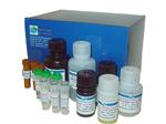 血红蛋白测试液现货供应,HICN比色法