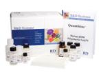 大鼠CXC趋化因子配体16(CXCL16)ELISA试剂盒