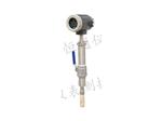 LDC插入式电磁流量计,插入式电磁水表价格